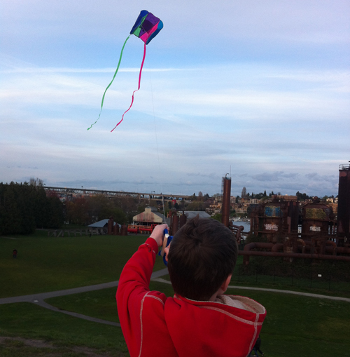 Cubs and kites